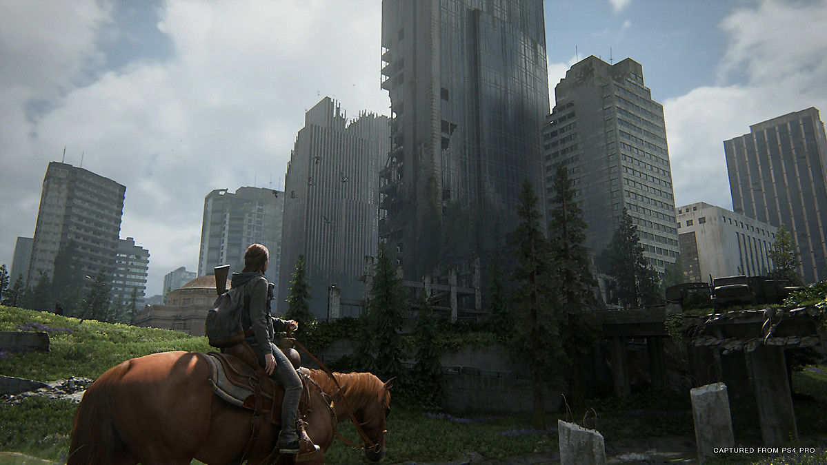 Picture of The Last of Us Part II Standard Plus Edition