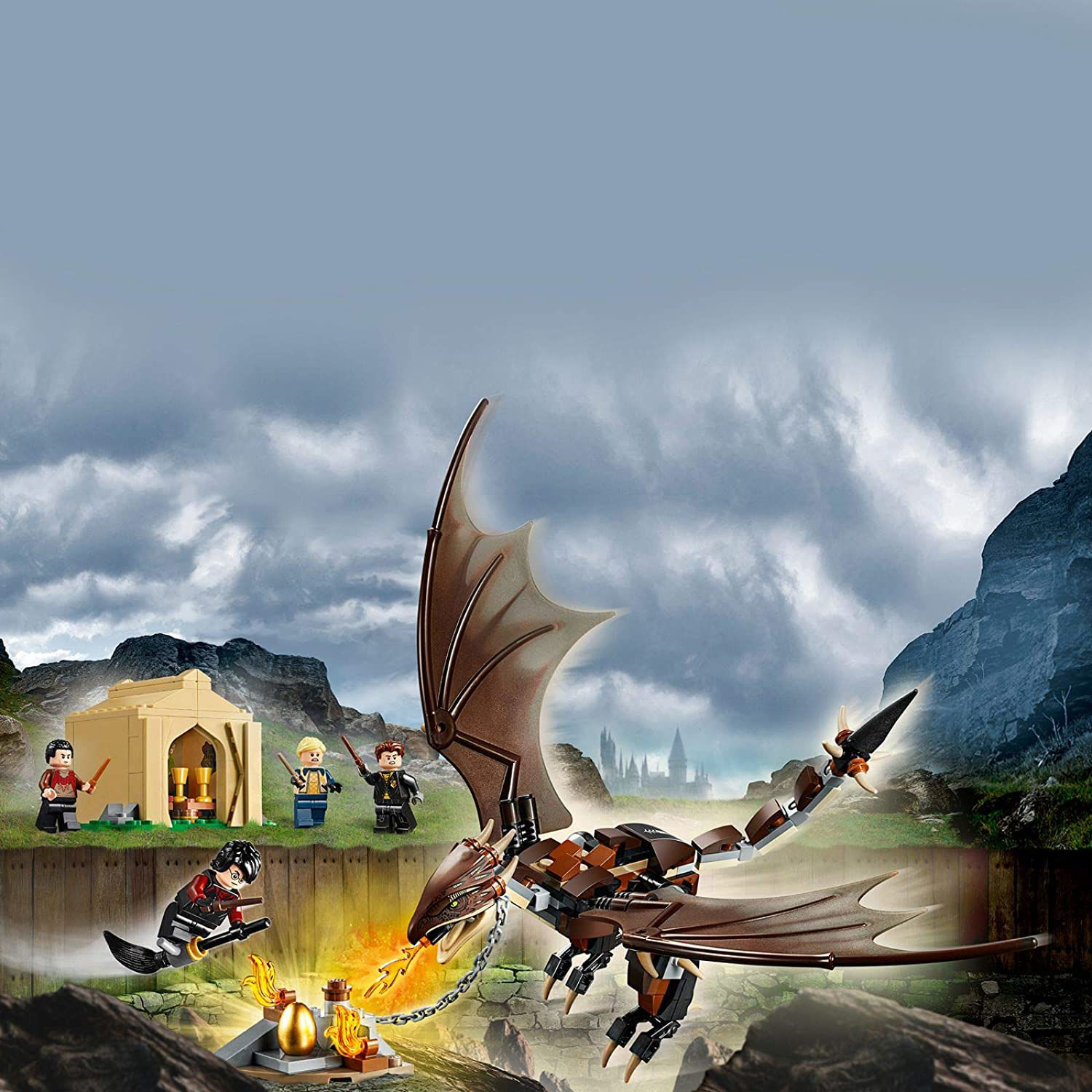 Picture of Hungarian Horntail Triwizard Challenge