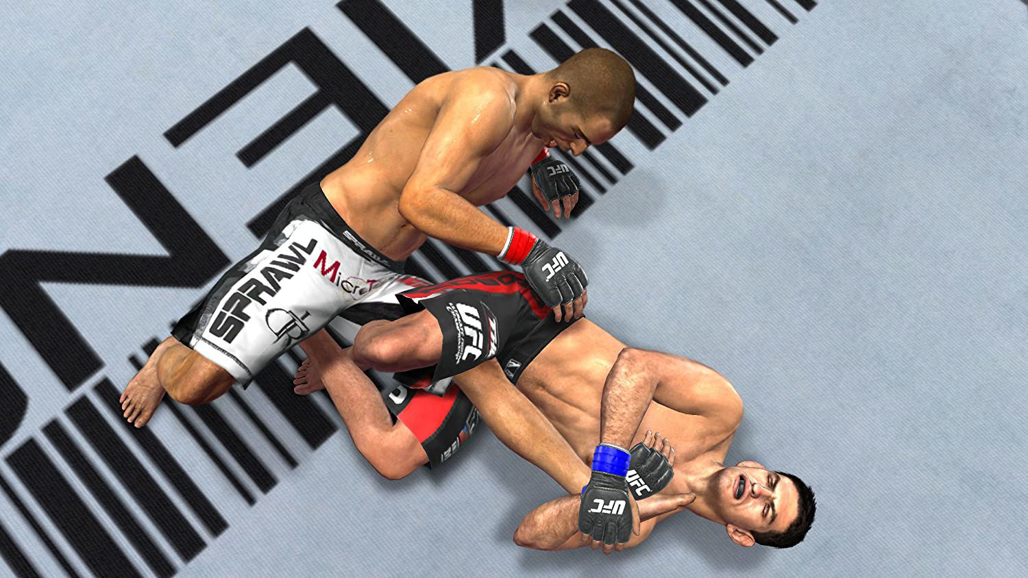 Picture of UFC Undisputed 2010