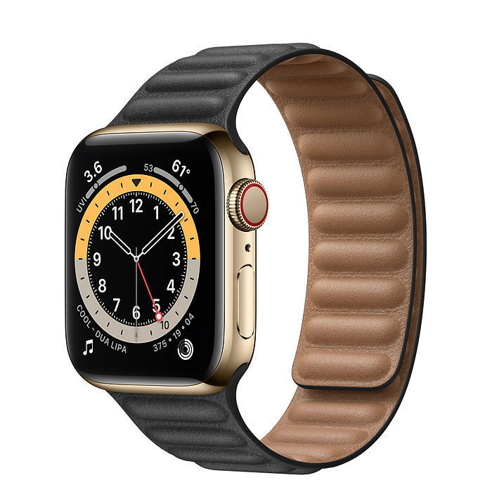 Apple Watch Gold Stainless Steel Case with Leather Link